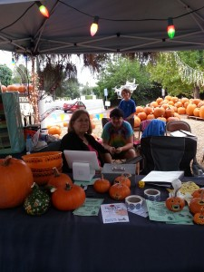 Selling Pumpkins with youth