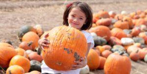 pumpkin2016-10-14_20-43-06